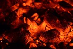 Charbon de bois brûlant Images stock