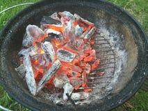 Charbon de bois de gril de BBQ de Weber Images libres de droits