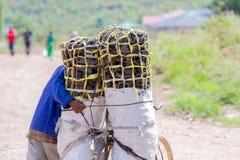 Charbon de bois de transport d'homme pour le repas de famille Image libre de droits
