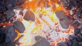 Charbon et le feu en plan rapproché banque de vidéos