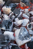 charbons Photo libre de droits