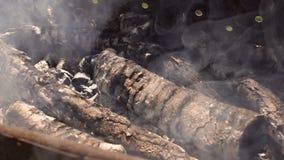 Charbons brûlant dans le brasero pour le barbecue Plan rapproché banque de vidéos