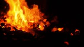 Charbons brûlants dans un forgeron Forge banque de vidéos