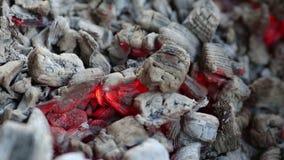 Charbons brûlants, fond rougeoyant de charbon de bois banque de vidéos