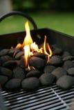 Charbons de bois de barbecue Photographie stock libre de droits