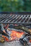 Charbons de bois de barbecue de pique-nique Image libre de droits