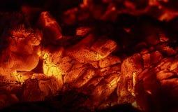 Charbons en bois Photo libre de droits