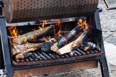 Charbons et bois de chauffage sur le feu photos libres de droits