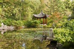 Charca con los waterlilies y el pabellón chino Fotos de archivo libres de regalías
