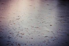 Charca congelada Fotos de archivo