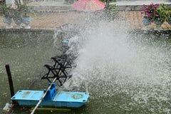Charca de agua Imagen de archivo