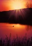 Charca de la puesta del sol Imágenes de archivo libres de regalías