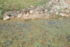 Charca de las aguas residuales Fotografía de archivo