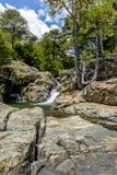Charca de piedra con una cascada de un bosque viejo fotos de archivo