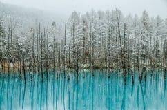 Charca del azul de Biei Imagenes de archivo
