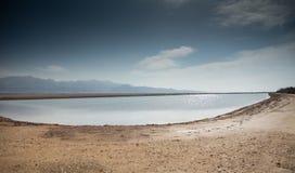 Charca del desierto Imagen de archivo libre de regalías