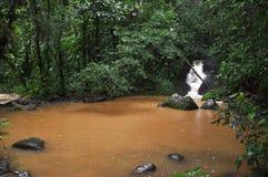 Charca del fango Imagen de archivo libre de regalías