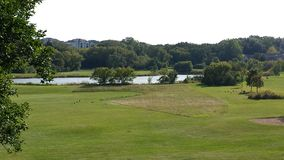 Charca del golf Fotografía de archivo libre de regalías