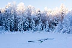 Charca del invierno Fotos de archivo libres de regalías