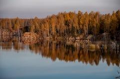 Charca en el fondo del bosque del otoño Imágenes de archivo libres de regalías