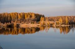 Charca en el fondo del bosque del otoño Fotos de archivo