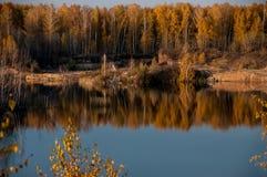 Charca en el fondo del bosque del otoño Foto de archivo