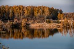 Charca en el fondo del bosque del otoño Imagen de archivo libre de regalías