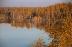 Charca en el fondo del bosque del otoño Fotografía de archivo libre de regalías