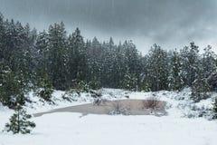 Charca en el invierno imagenes de archivo