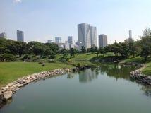 Charca en el parque al lado de rascacielos Imagen de archivo libre de regalías