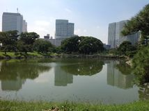 Charca en el parque al lado de rascacielos Imagen de archivo