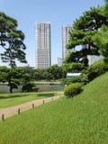 Charca en el parque al lado de rascacielos Imagenes de archivo