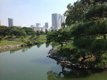 Charca en el parque al lado de rascacielos Fotos de archivo libres de regalías