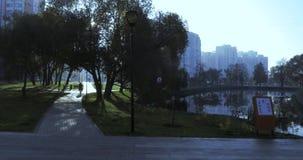 Charca en el parque de la ciudad almacen de metraje de vídeo