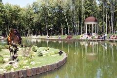 Charca en el parque nombrado después de Gorki Fotografía de archivo