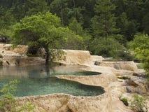 Charca en Huanglong, China del rododendro Imagen de archivo