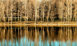 Charca en un paisaje del otoño del parque de la ciudad Imagen de archivo libre de regalías
