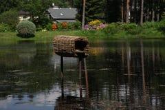 Charca hermosa, casa del pato Imagen de archivo
