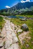 Charca hermosa en el medio de las montañas, Polonia Imagen de archivo