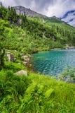 Charca maravillosa en las montañas de Tatra en el amanecer Imagen de archivo libre de regalías