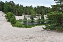 Charca o pequeño lago rodeado por la arena blanca fotos de archivo