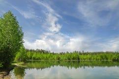 Charca rodeada por el bosque Fotos de archivo