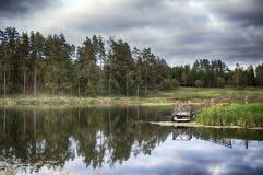 Charca rural salvaje en bosque conífero cercano de lámina Fotos de archivo