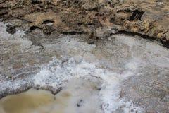 Charca salada en las rocas en la costa de mar fotos de archivo libres de regalías