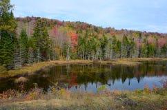 Charca y bosque de Adirondack durante la estación del otoño fotos de archivo