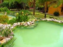 Charca y jardín verdes de Beauriful Imagen de archivo libre de regalías
