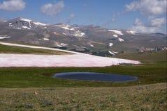 Charca y tundra en las montañas de Beartooth Foto de archivo libre de regalías