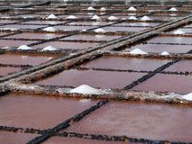 Charcas de la evaporación de la sal de Salina del Carmen Foto de archivo