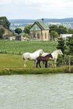 Charchigne - Landscape Royalty Free Stock Photography