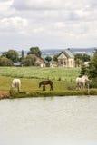Charchigne - Landscape Stock Photos